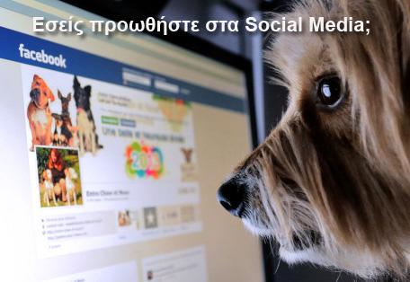 Σκύλος και Social Media